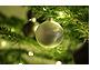 Prettige kerstdagen en een gelukkig 2012!